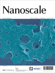Nanoscale2