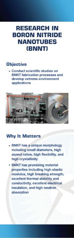 Boron Nitride Nanotubes